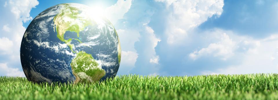 Azienda trasporto ecologica